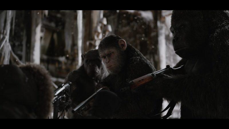 【猩球崛起War for the Planet of the Apes】背水一戰!人類與猩猩族們的誰會勝出?