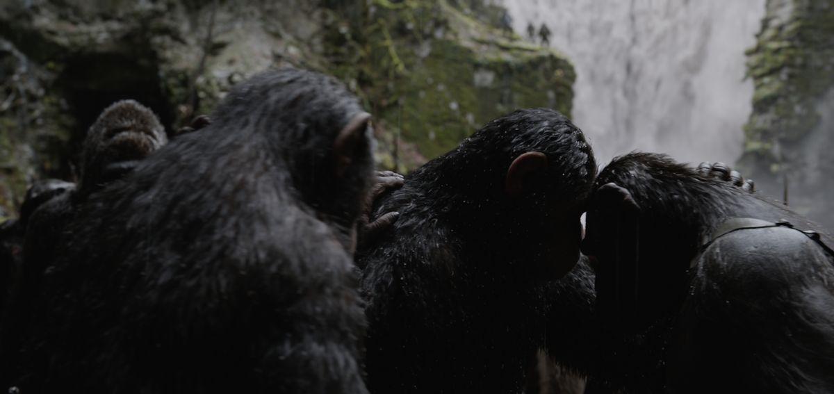 【猩球崛起:終極決戰War for the Planet of the Apes】觀後影評:人性自私,比起動物還不如