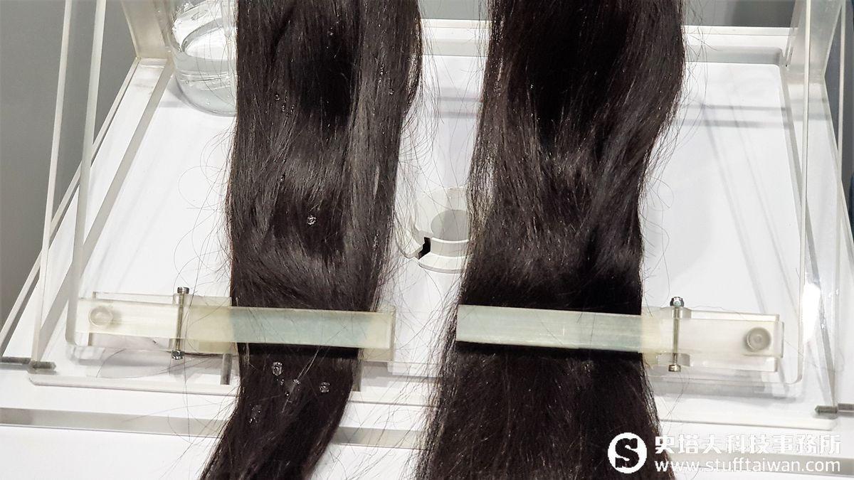 拔掉白頭髮會長出更多?Dyson頭髮學堂解開頭髮的各種疑惑