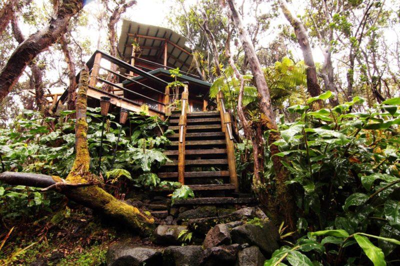 夏威夷五間叢林房間 讓你身歷其境侏儸紀世界